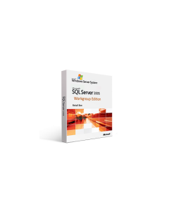 Microsoft SQL Server 2005 Workgroup Edition (1 Processor) Retail Box