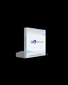 Microsoft Visual Studio 2010 Team Foundation Server Open License