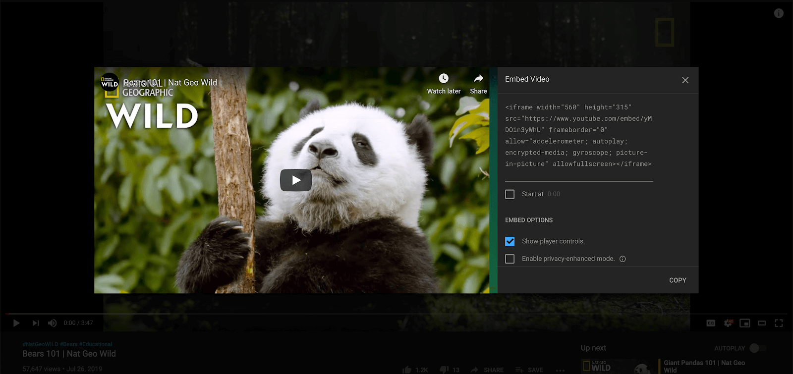 How to embed YouTube Video to PowerPoint