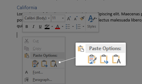 Paste Options in Word