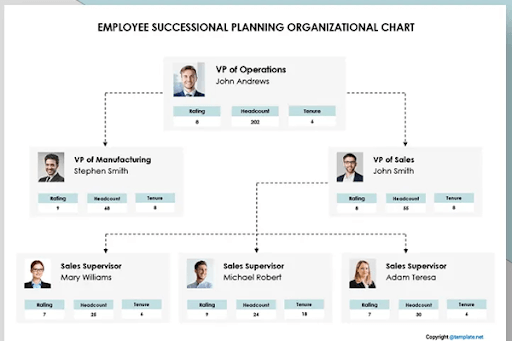 employee succession planner template
