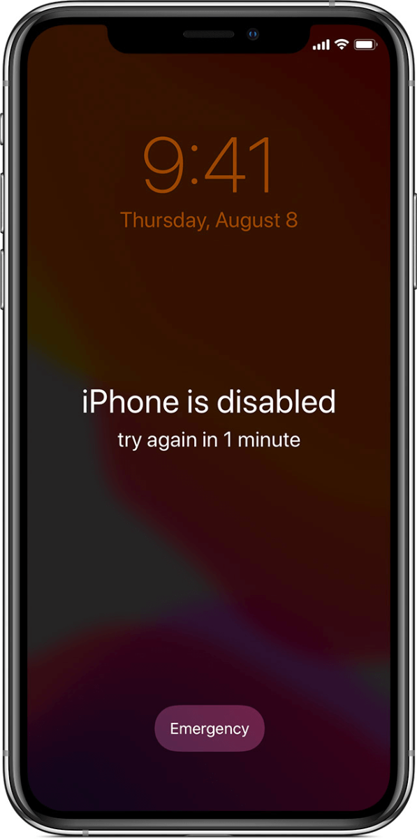 iphone is disabled try in x minutes
